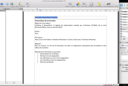 Interface de Nisus Writer Pro